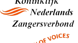 knzv-flow-of-voices-logo_03-300x210